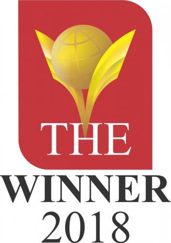 logo the winner 018